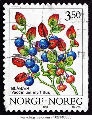 Postage Stamp Norway 1995 Common Bilberry