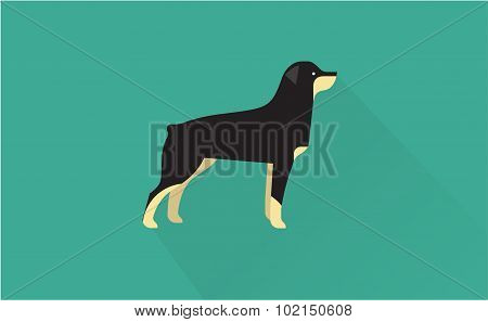 rottweiler icon