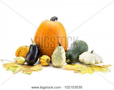 Composition of pumpkin, zucchini,summer squashes, and dead maple leaves on white background