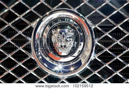 Close Up Logo Of Jaguar On Bumper