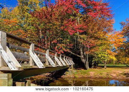 A pedestrian bridge over a autumn stream.