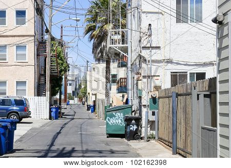 Venice Beach Street