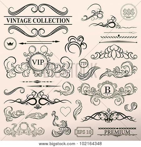 Vintage set decor elements. Elegance old hand drawing set. Outline ornate swirl leaves, label, acant