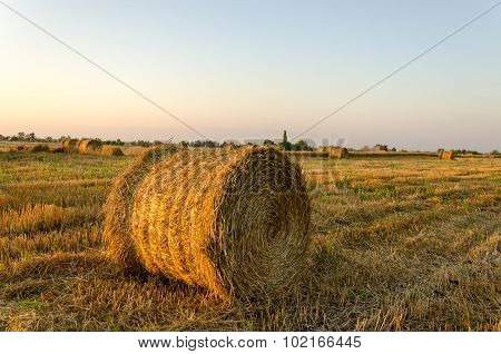 Straw, Rolled Up In A Field