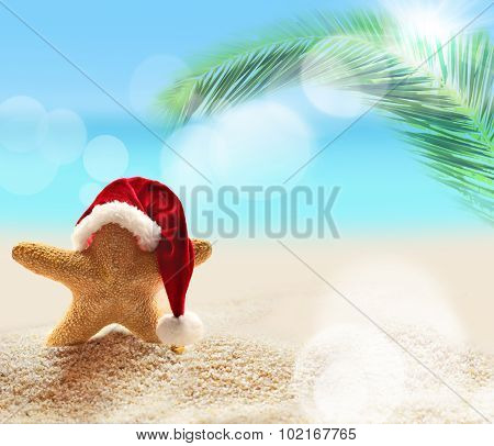 Summer Beach. Starfish In Santa Claus Hat.