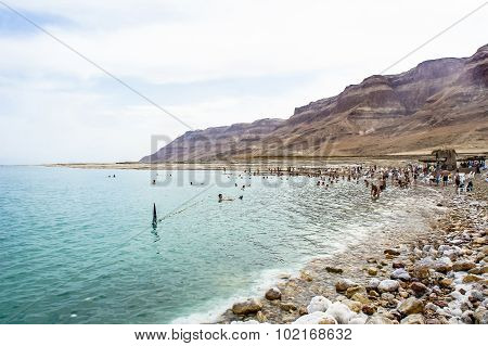 People Swim In The Dead Sea