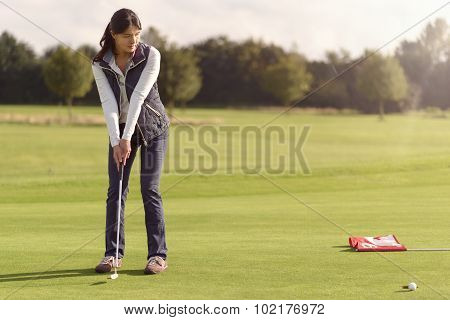 Golfer Putting For The Hole