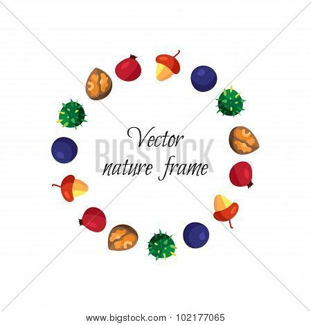 Vintage Nuts, Berry, Fruits Frame