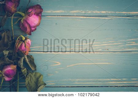 Withered Flower Vintage Background / Withered Flower Vintage / Withered Flower On Vintage Background