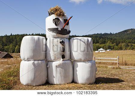 Hay Bale Snowman In Summer