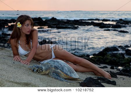 Woman In Bikini With Sea Turtle