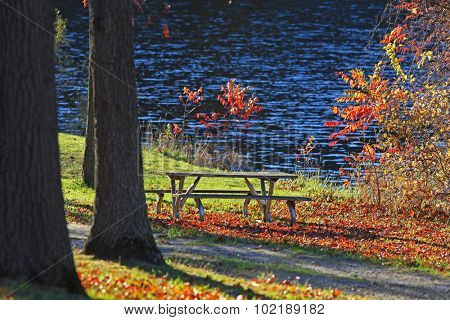 Picnic table under beautiful autumn trees
