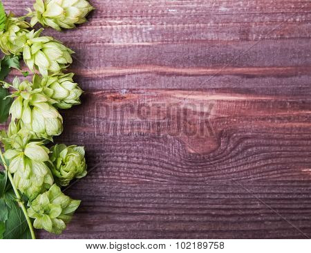 Hop Cones N The Wooden Background