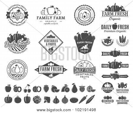 Fruits And Vegetables Labels, Fruits And Vegetables Icons And Design Elements