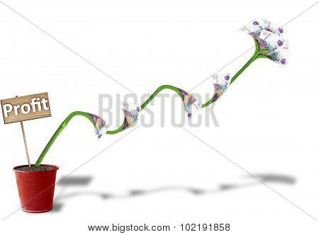 Financial Growth Plant
