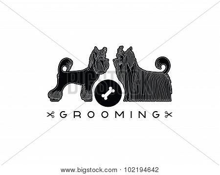 Pet Grooming 5