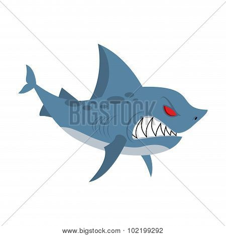 Angry Shark. Marine Predator With Large Teeth. Deep-water Denizen. Vector Illustration  Shark On Whi