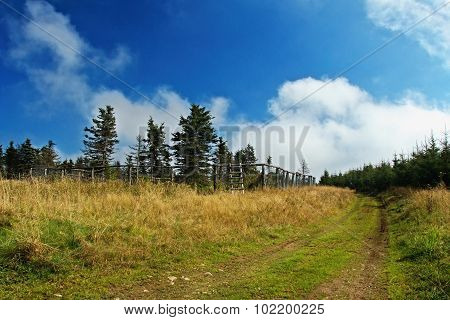 Field path in Krusne hory mountains