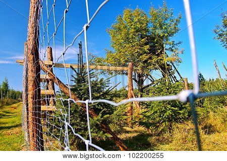 forest fence in Krusne hory mountains