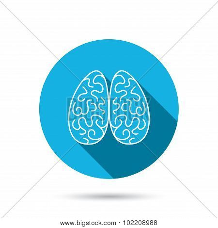 Neurology icon. Human brain sign.