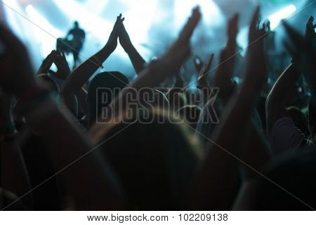clapping crowd at the concert, rear view