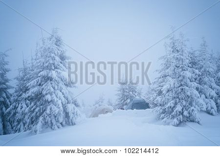 Tourist tent in the winter woods. Severe hike in cold weather. Carpathian Mountains, Ukraine, Europe. Color toning