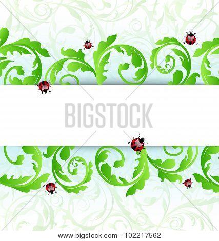 Eco friendly background with ladybugs