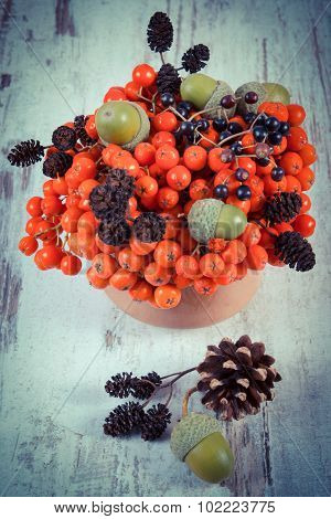 Vintage Photo, Autumn Fruits Of Forest On Rustic Wooden Background