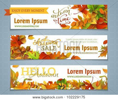 Vector Set Of Autumn Banners.