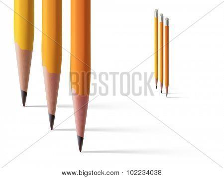 vector pencil illustration