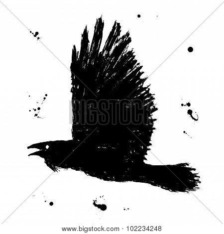 Raven. Grunge hand drawn ink sketch of black fliyng bird