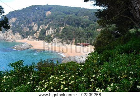 Lloret De Mar Costa Brava Coast Spain