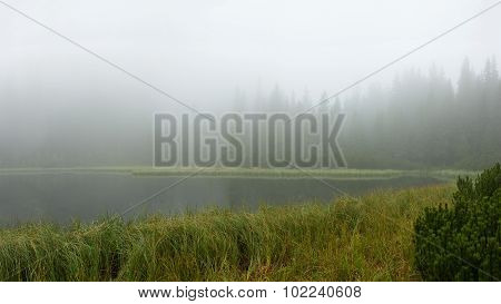 The Lake In The Fog