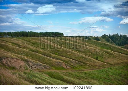 nature background with fresh grass and sky