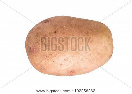 fresh ripe potatoes isolated on white background
