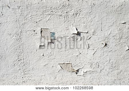 Old Wall Fragment