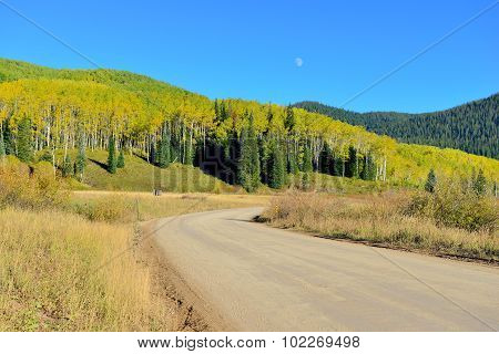 County Road Through Yellow And Green Aspen During Foliage Season