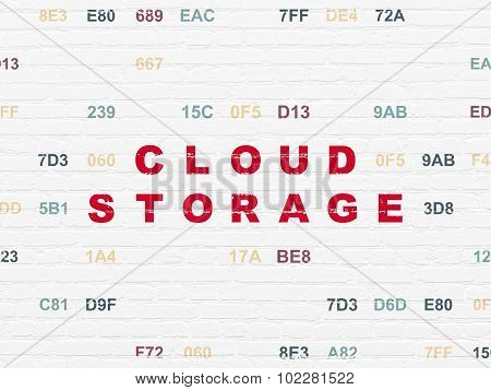 Cloud computing concept: Cloud Storage on wall background