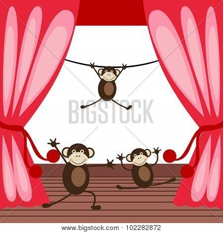 Monkeys acting on a stage