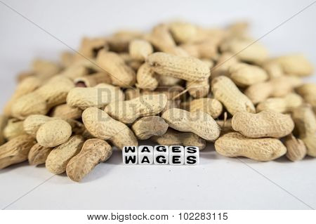 Wages Text With Peanuts