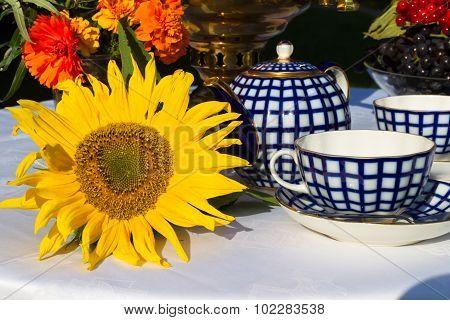 Samovar, Cups Of Tea, Red Flowers With Branches Buckthorn, Flower Sunflower, Viburnum
