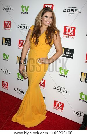 LOS ANGELES - SEP 18:  Breanna Rubio at the TV Industry Advocacy Awards Gala at the Sunset Tower Hotel on September 18, 2015 in West Hollywood, CA