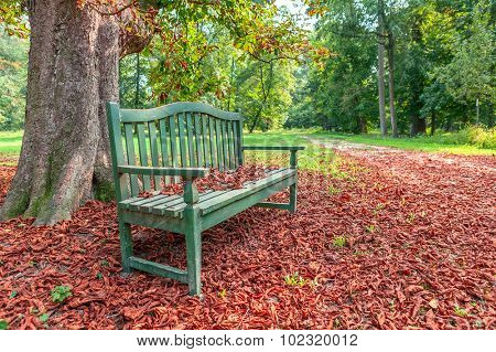 Wooden bench under tree on the ground covered with red fallen leaves in autumnal park in Piedmont, Northern Italy.