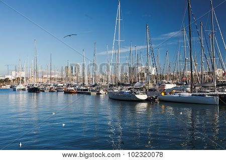 Barcelona Port View With Many Yachts. Port In Barcelona, Spain