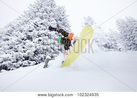 Snowboard freerider moving down on ski slope splashing snow powder with snowy trees on background. Focus in motion