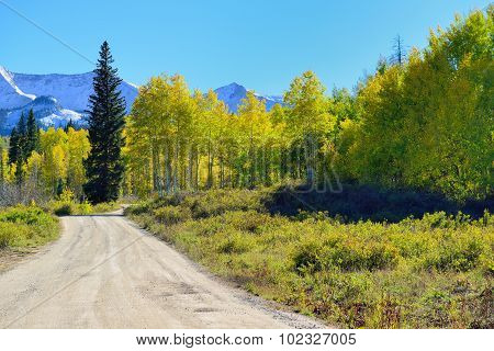 Road Through The Alpine Scenery Of Yellow And Green Aspen During Foliage Season
