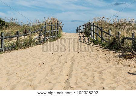 Wide Open Pathway at Sandbridge