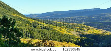 Alpine Scenery Of Yellow And Green Aspen And Mountains During Foliage Season