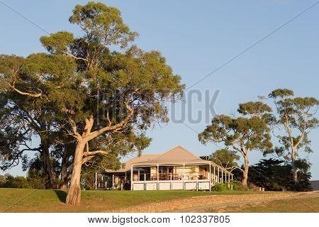 Winery Tasmania