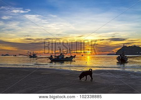 The Dog Boat And Sunrise